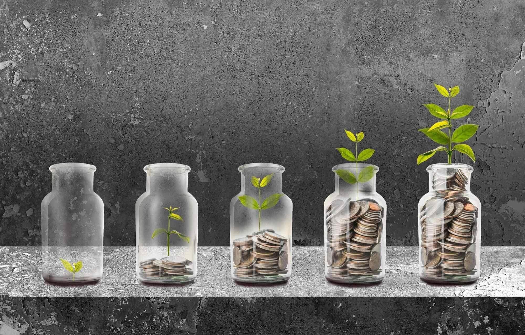Leaf Financial Advisers Ltd.